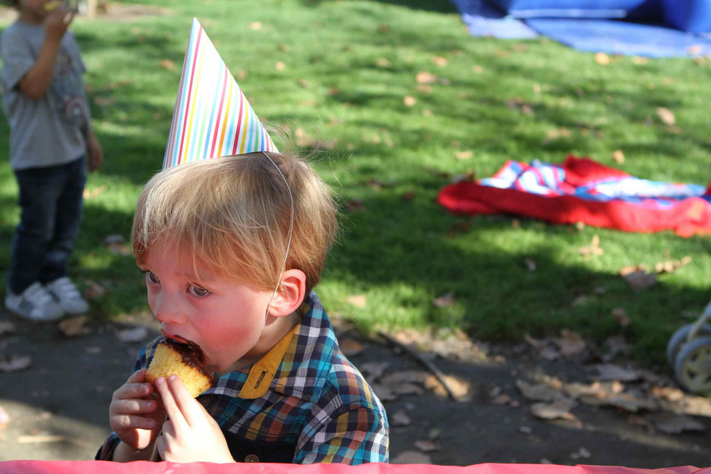 Charlie's 3rd birthday | Oh Lovely Day
