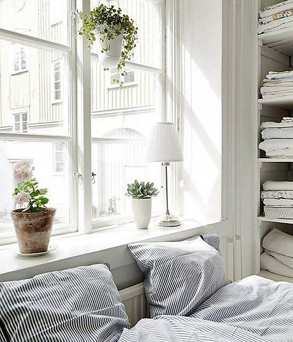 Hanging Indoor Plant Inspiration   Oh Lovely Day