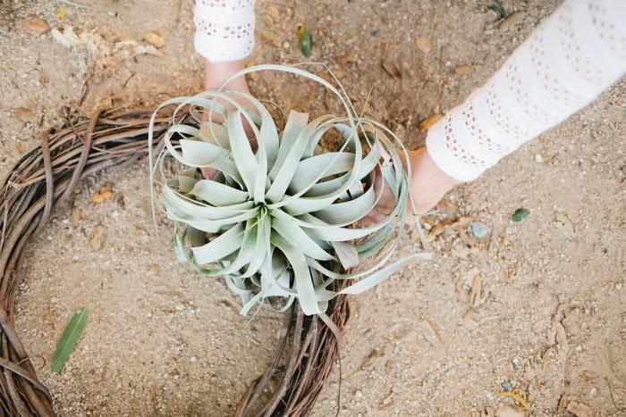 Air Plant Wreath DIY Tutorial   MV Florals + Megan Welker   Oh Lovely Day